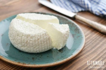 homemade ricotta cheese on a blue plate