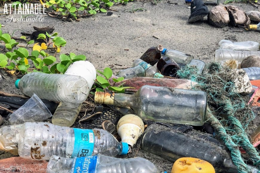 plastic bottles and marine debris -- environmental issues in plain site on a beach