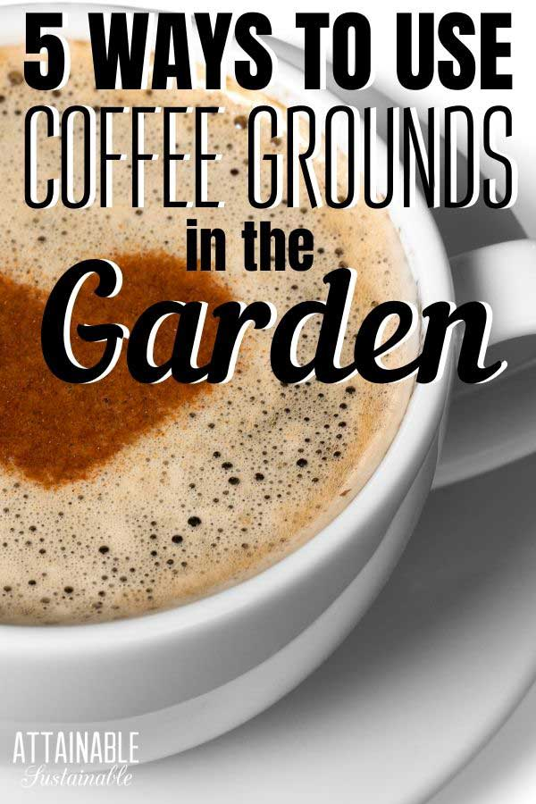 latte in a white cup with a heart design - the resulting coffee grounds are great for the garden