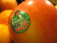 Sticker Shock: What the Stickers on Fruit are Telling You