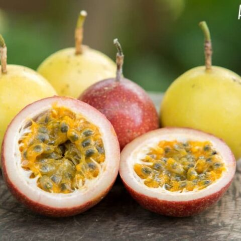 Fresh Passion Fruit Juice Recipe