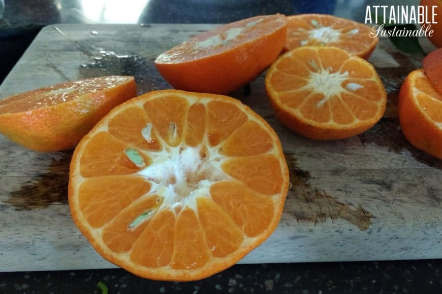 Tangerines sliced in half on a cutting board