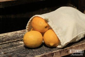 reusable produce bag with yellow lemons