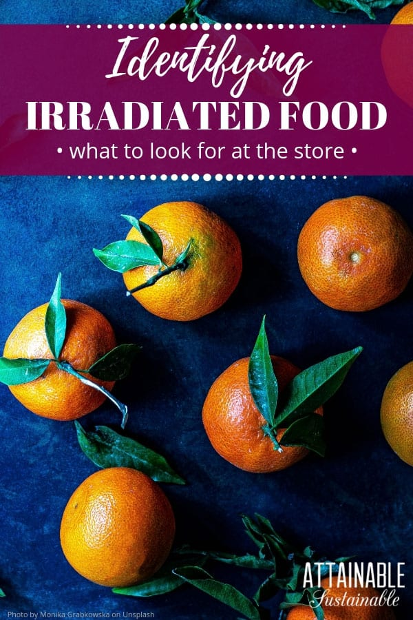 fresh tangerines evenly spaced on a deep blue background (from above) with words: Identifying irradiated food