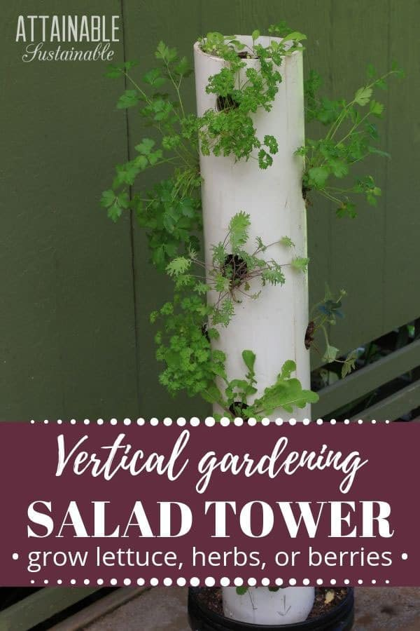 vertical tower garden in white pvc with herbs and kale