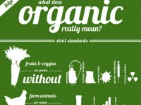 What Does Organic Really Mean?