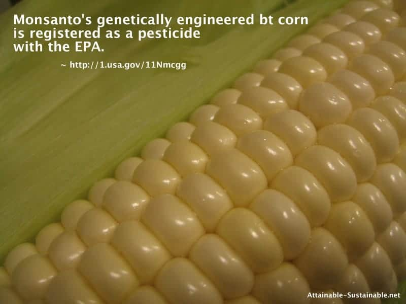 Are you still eating GMO corn?