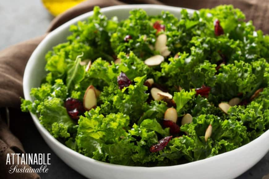 massaged kale salad with cranberries and almonds in a white bowl