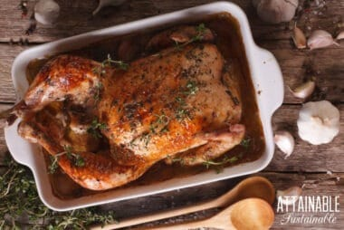 roasted chicken in casserole dish from above