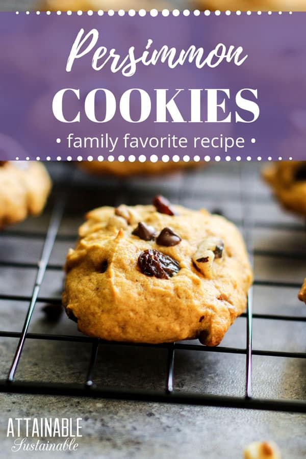persimmon cookies with raisins and chocolate chips on a cooling rack