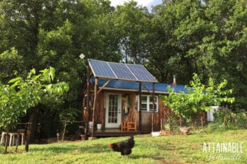 tiny house with a green lawn (and a black chicken)