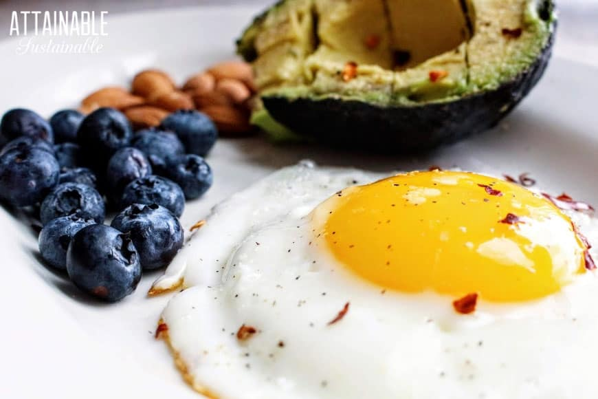 fried egg, sunny side up on a plate with avocado, blueberries and almonds