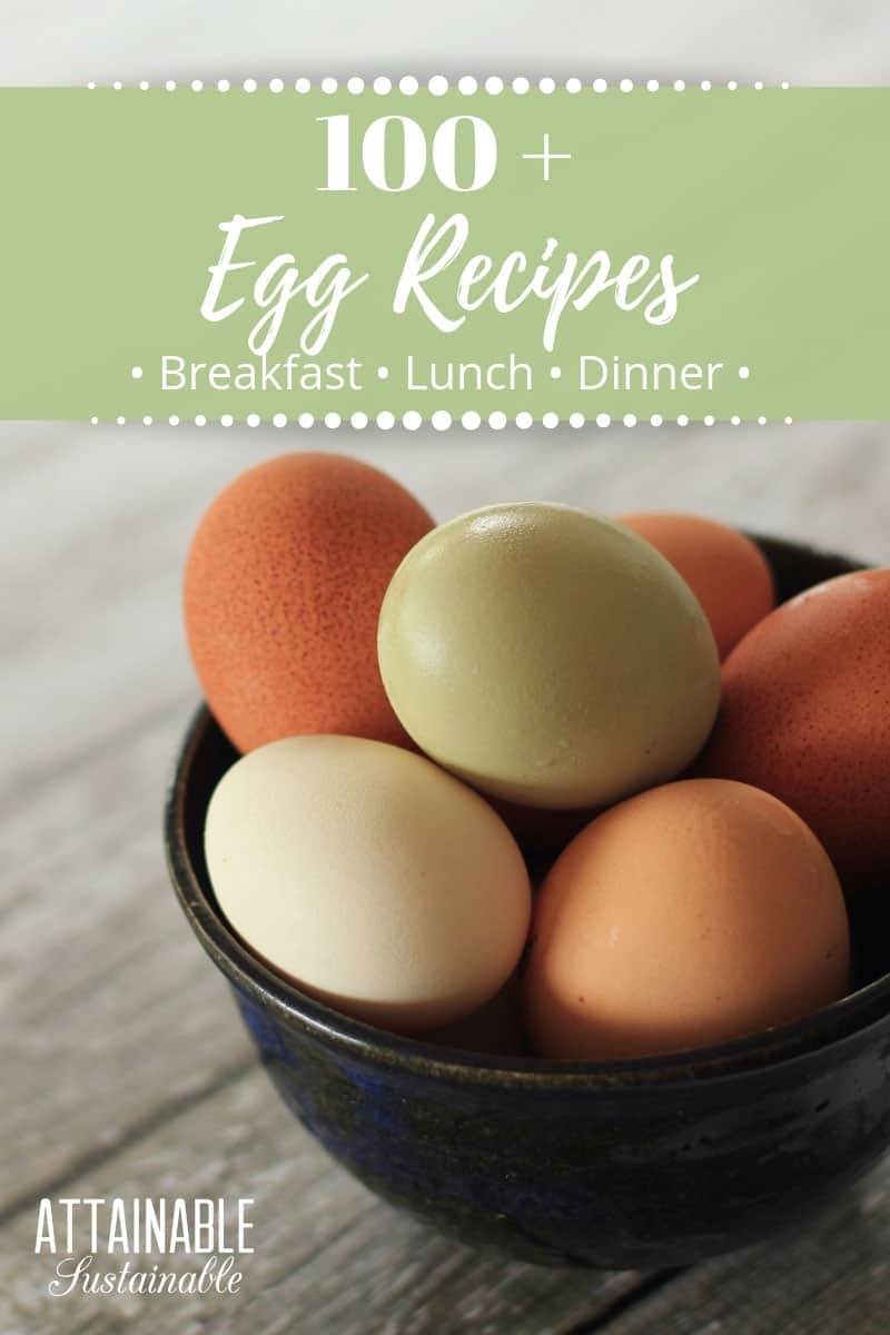 It's that time of year when farm fresh eggs are abundant. Whether you're looking for sweet or savory flavors, you'll find some great easy egg recipes here.  #recipes #cooking #eggs
