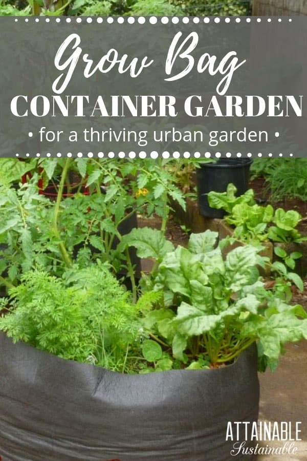 Growing food in an urban garden has its challenges. Finding a fast, easy way to start growing in raised beds isn't one of them. Grow bags can solve that problem! The porous material is great for plants, but the portable, lightweight nature of these grow bags makes them a good option for your urban garden. #urbangarden #garden #growingfood