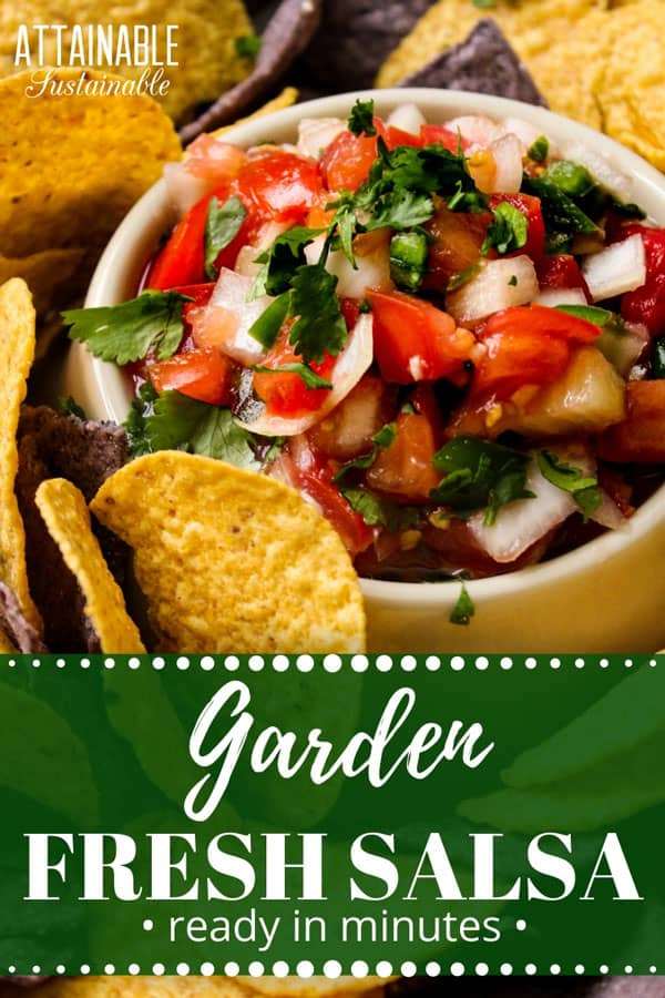 Garden fresh salsa recipe in a yellow bowl with round yellow tortilla chips
