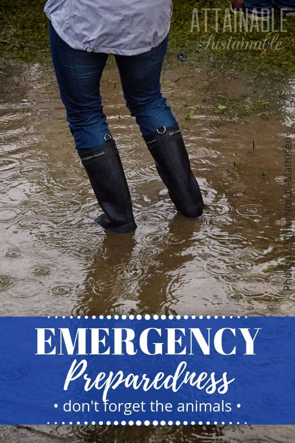 woman in jeans and black rubber boots, walking through muddy water - text: emergency preparedness