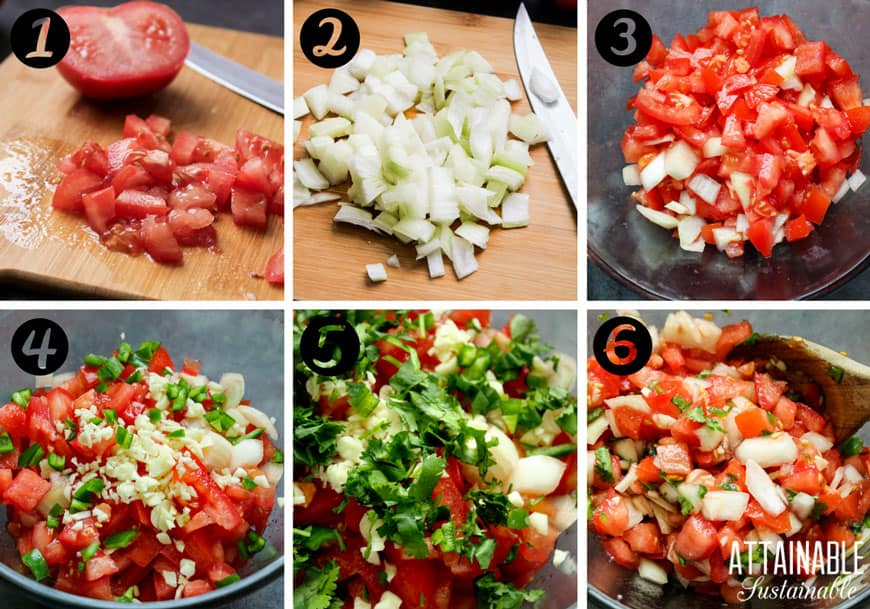 ingredients for making garden fresh salsa recipe: chopped tomatoes, onions, peppers, cilantro