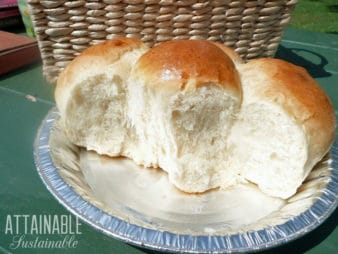 portuguese sweet bread rolls in a pie tin