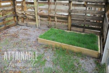 green grass in a wooden grazing box