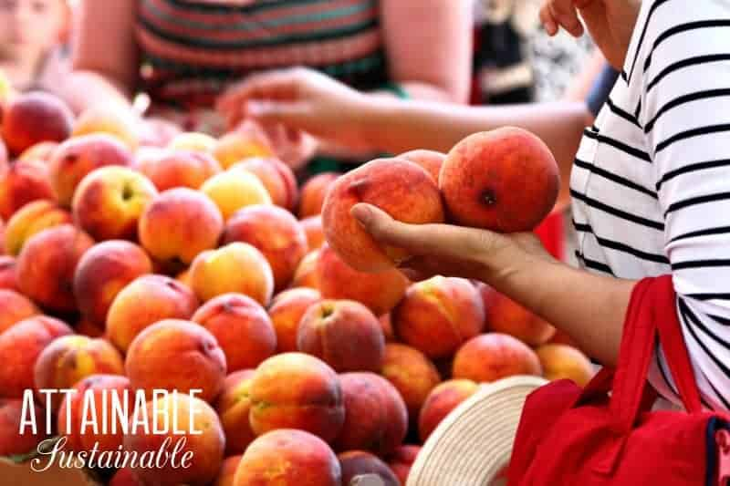 woman choosing peaches from a large pile