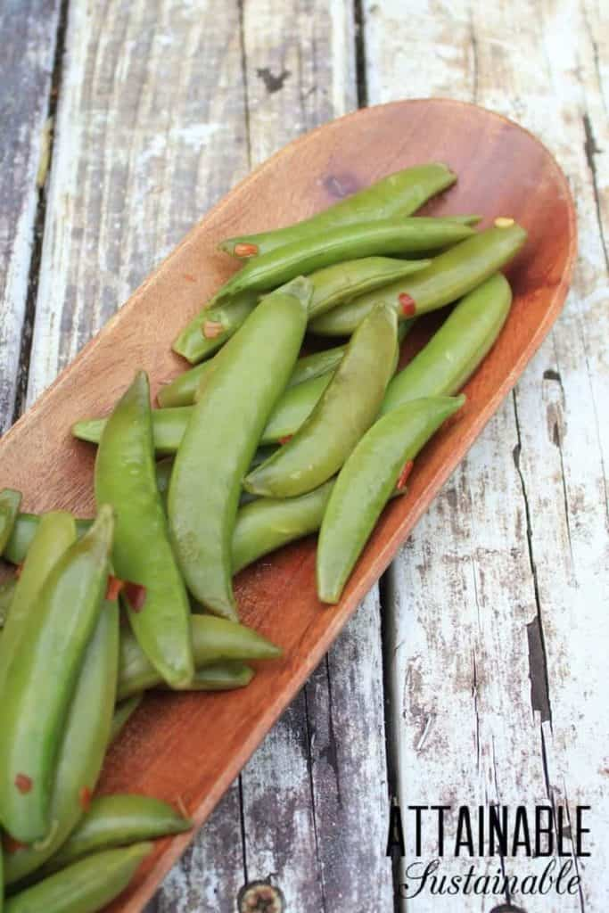 fermented sugar snap peas in a wooden dish