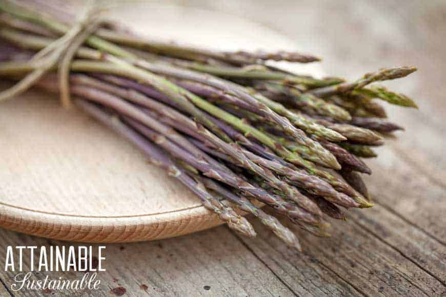 asparagus on a wooden cutting board - comparing annuals vs. perennials