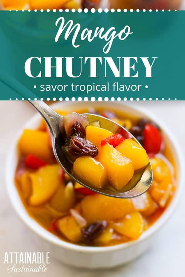 White bowl full of mango chutney