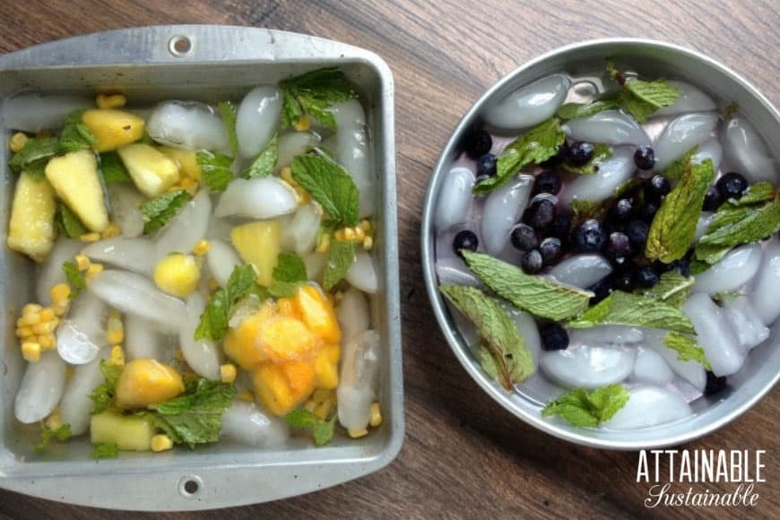 fruit and ice in cake pans