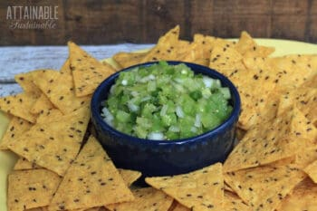 tomatillo salsa in a blue bowl surrounded by tortilla chips
