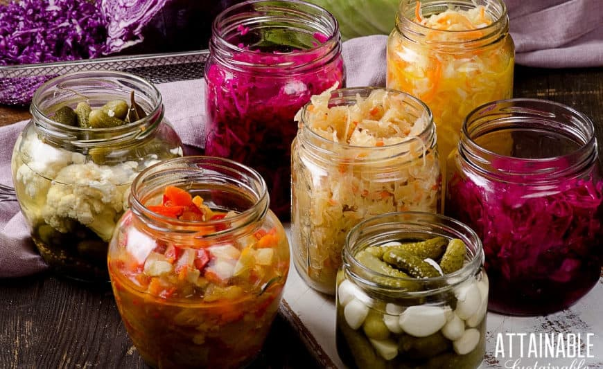 fermented foods recipes on display in glass jars