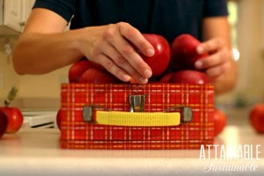 Send your kids back to school with a healthy lunch! Ideas for what to pack, how to pack it, and what to keep in your pantry for fast fixing lunches.