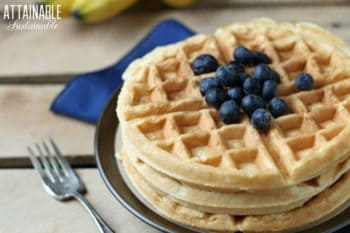 healthy waffles topped with blueberries