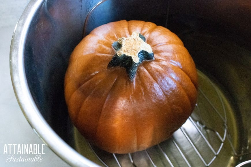 whole pumpkin in an Instant Pot from above