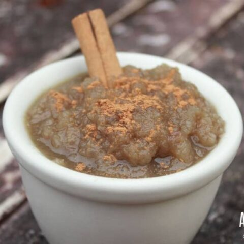 yacon applesauce recipe in a white bowl with cinnamon