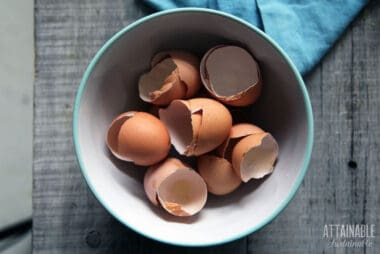 brown eggshells in a teal bowl