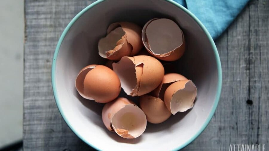 brown eggshells in a teal bowl
