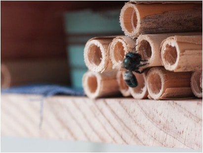 bee housing -- round hollow tubes