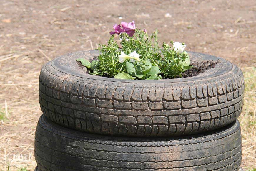 tires stacked to make a flower planter