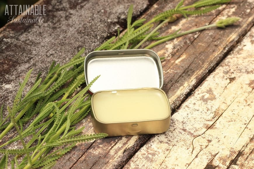 small tin, open, showing natural bug bite relief cream