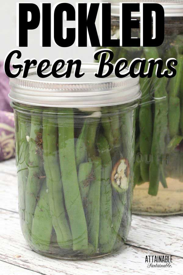 jar of pickled snap beans