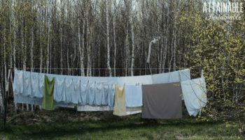 Light colored laundry hanging on a line with birch trees in the background