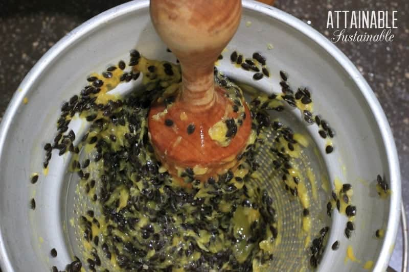 straining passion fruit juice through a chinois, view from above showing black seeds and wooden pestle