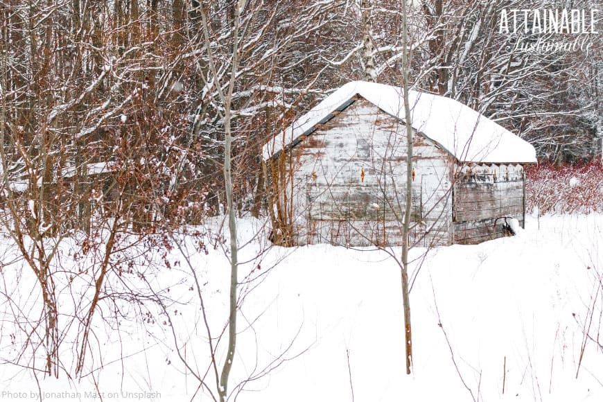 wooden barn covered in snow