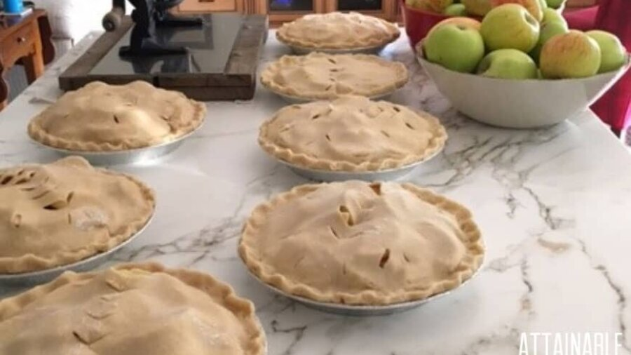 7 uncooked apple pies on a white countertop