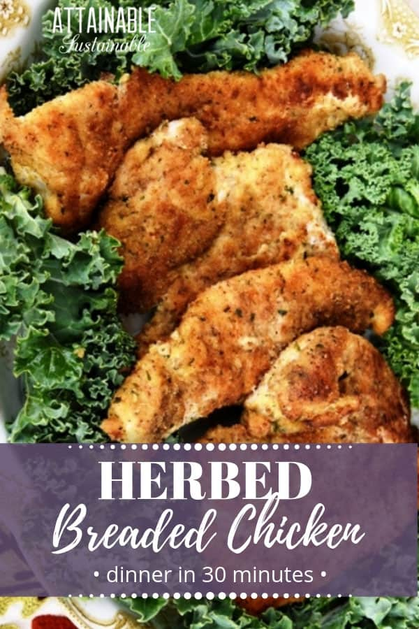 baked breaded chicken breasts on a bed of kale