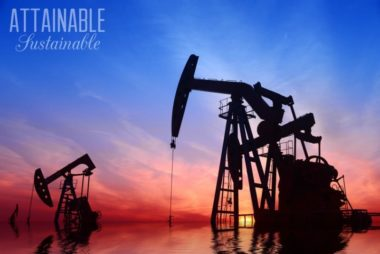 Oil and Fuel: Eco-Friendly Changes You Can Make to Cut Dependence