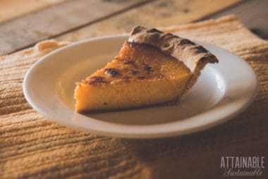 slice of pumpkin pie on a white plate (rough wood table)