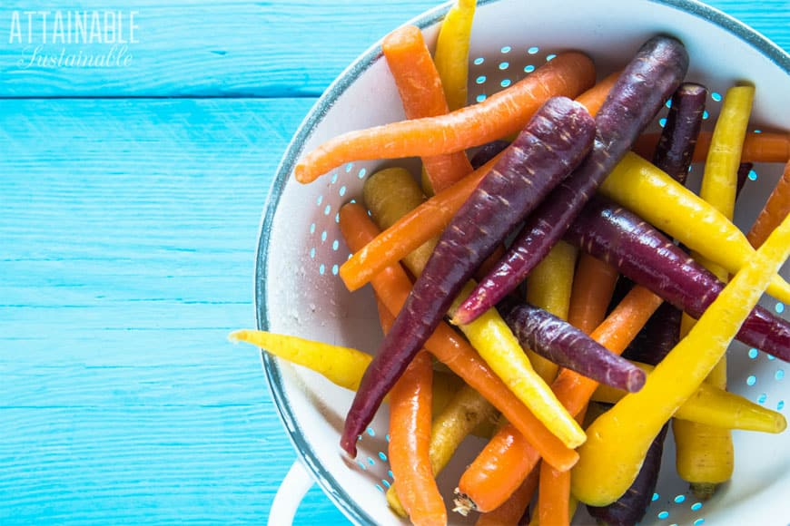 orange, yellow, and purple carrots in a white colander on a teal board