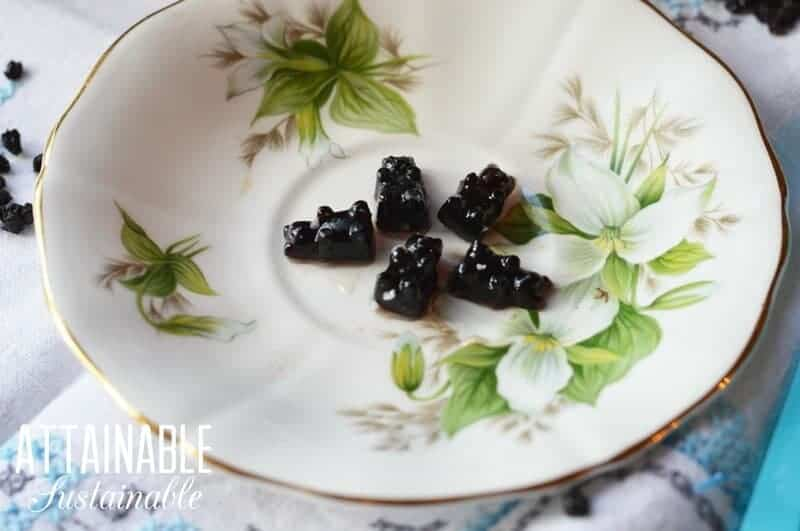 Elderberry Gummy Bears on a white floral plate