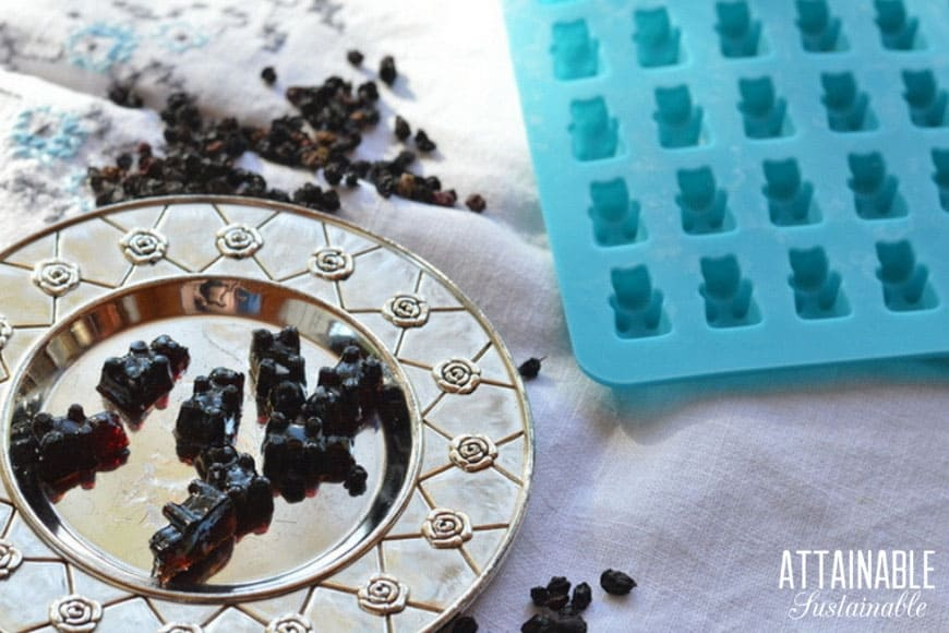Enjoy Elderberry Benefits with DIY Elderberry Gummy Bears